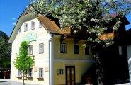 © Kraft | Heimat- und Landlermuseum in Bad Goisern am Hallstättersee