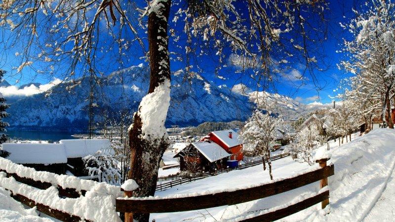 Bildergebnis für winter