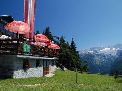 © Kraft | Für den Bergfex: Sonnenalm auf der Zwieselalm in der Wander-und Skiregion Dachstein West in Gosau.