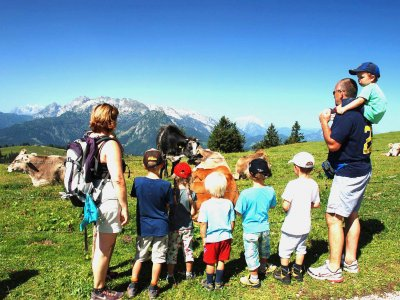 © Kraft | Familienwanderwege im Salzkammergut