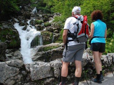 © Kraft | Wandern in der UNESCO Welterberegion Hallstatt Dachstein Salzkammergut: Impressionen von der Wanderung zur Quelle des Waldbaches in Hallstatt