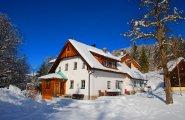 vorschau winter bad goisern ferienhaus ferienwohnung waldbankerl c kraft 100