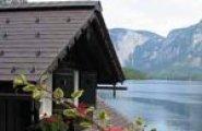HomePageThumbnail-fallnhauser_ingrid