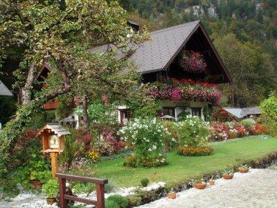 © Ebner | Urlaub im Salzkammergut: Blumenhaus Ebner  in Obertraun