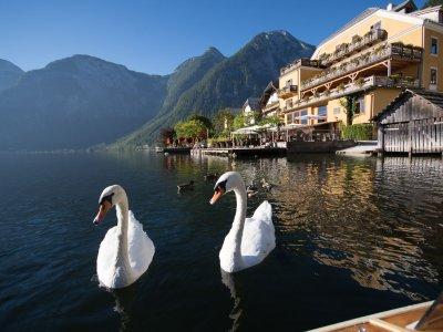 © Wenger | Urlaub in Hallstatt: Seehotel Grüner Baum