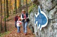 (C)Kraft |  Soleleitungsweg zwischen Gosaumühle und Bad Goisern gesperrt