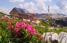 Impressionen vom Krippenstein in Obertraun am Hallstättersee © Lodge am Krippenstein