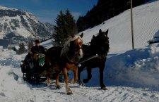 © Kraft  Pferdeschlitten-Nachtfahrt in Gosau