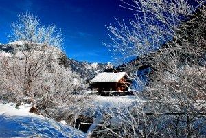 © Kraft   Schneeschuhwanderung durch den Märchenwald in Gosau