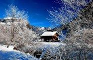 © Kraft | Schneeschuhwanderung durch den Märchenwald in Gosau