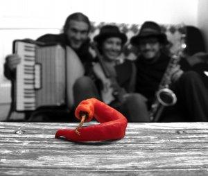 © Capsicum | Volxmusic mit der Band Capsicum  im Hand.Werk.Haus