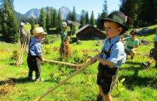 © Jehle |  Entdecken Sie das Gosautal! Wandern mit Betty in Gosau: Wichtelwanderung auf der Plankensteinalm bei einem Urlaub mit Kindern im Salzkammergut.