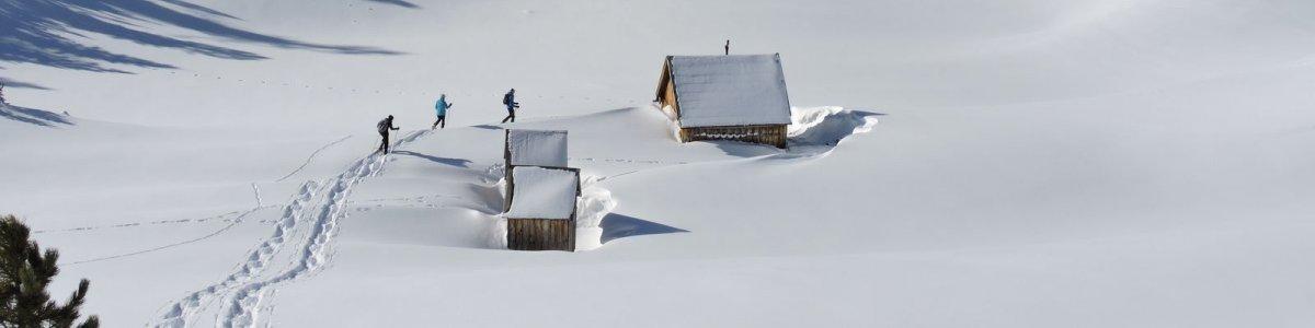 Geführte Schneeschuhwanderungen  - © Bichler