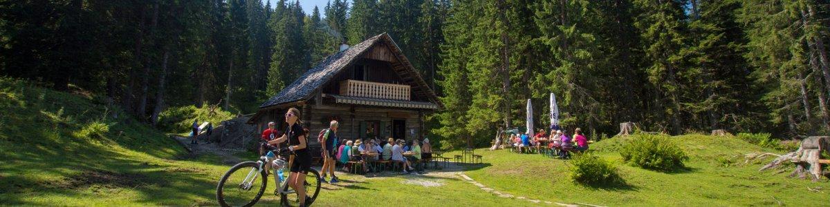 Badstub'n Hütte in Gosau - © Kraft
