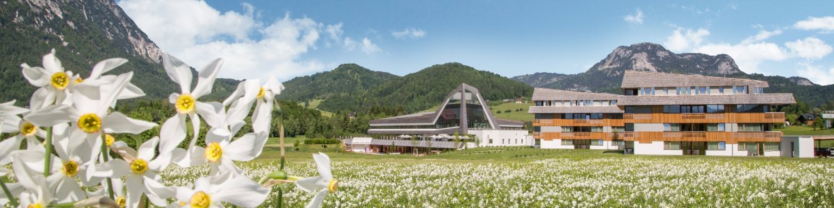 Daffodils Bad Aussee - Solebad & Vitalresort; Pure relaxation with panoramic views -