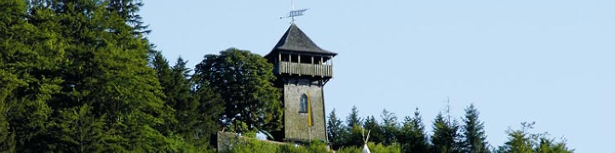 Places of interest in the Salzkammergut : The Siriuskogl hill  -