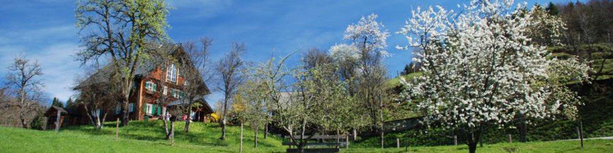 Frühling in Bad Goisern am Hallstättersee - © Kraft