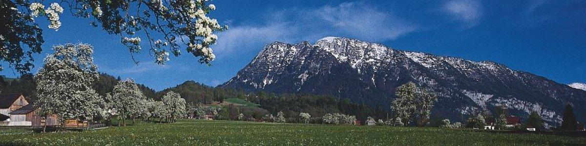 Frühling in der Ferienregion Dachstein Salzkammergut -