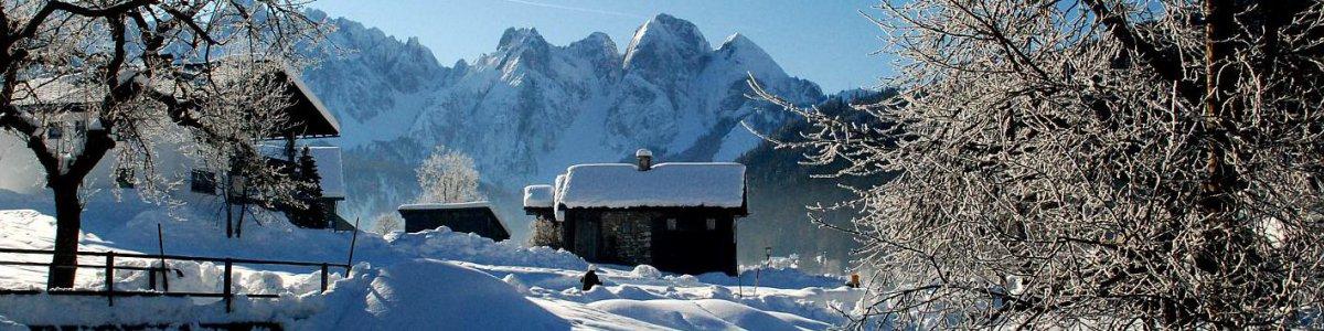 Schneeschuhwanderung durch den Märchenwald in Gosau  - © Kraft