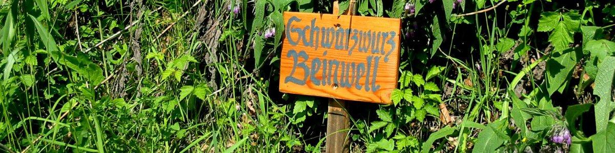 Ostuferwanderweg Obertraun Hallstatt Bad Goisern -