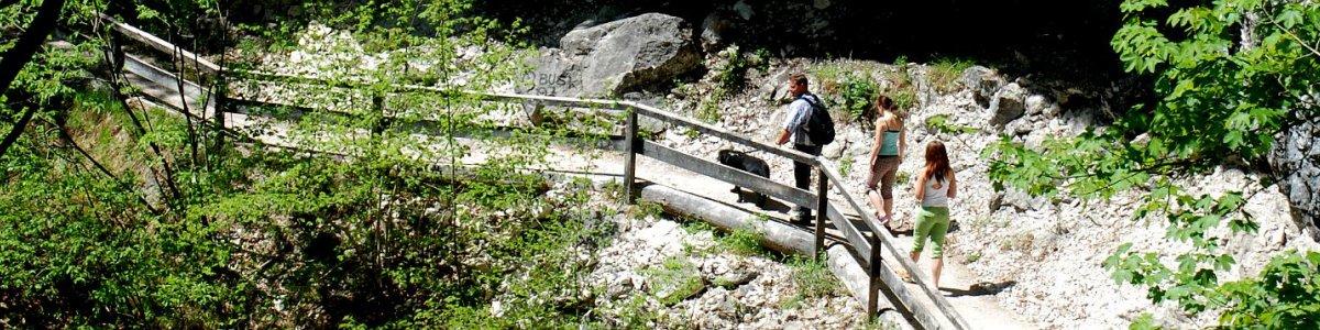 Koppentalwanderweg -