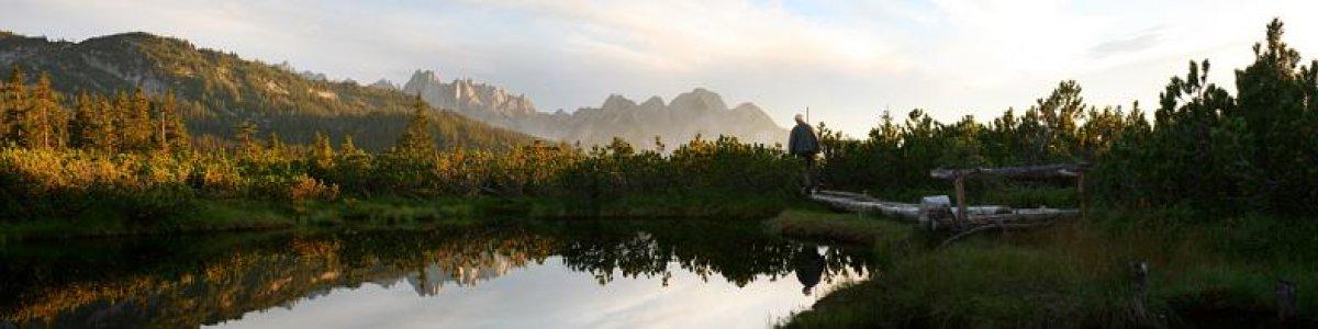 Wanderung mit Betty: Naturerlebnis Löckermoos - © OÖ.Tourismus/Röbl