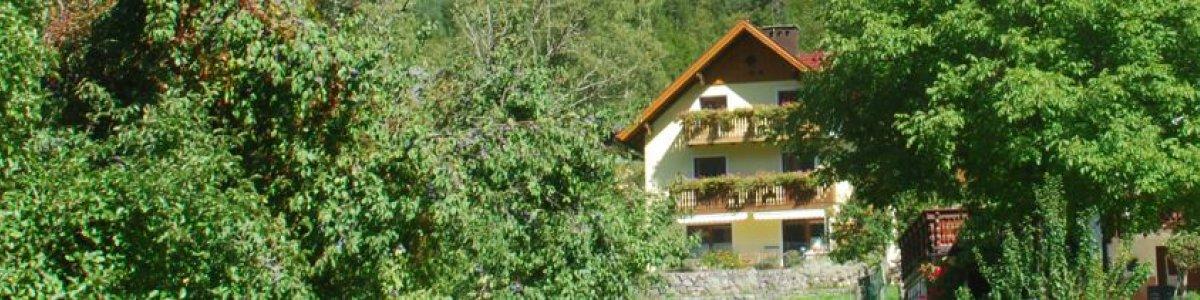 Ferien in Obertraun: Haus Hepi -