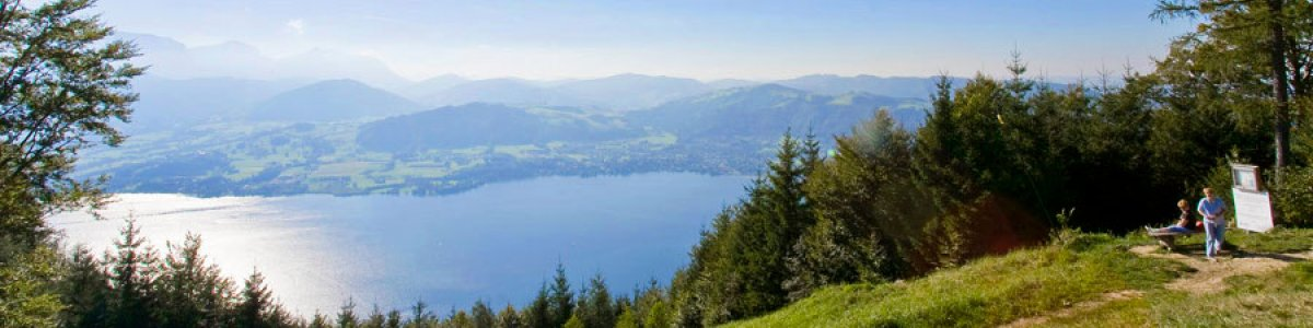 Grünberg mountain in Gmunden.  Family attractions on and around the mountain!  - © Hinsl