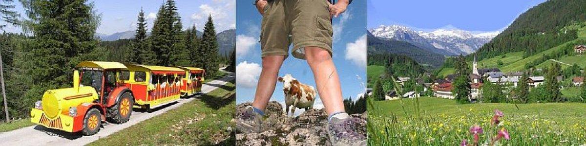 Urlaub beim Kirchenwirt in Russbach am Pass Gschütt -